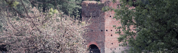 Torre medievale alla Caffarella
